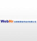 合肥朗霁软件技术有限公司